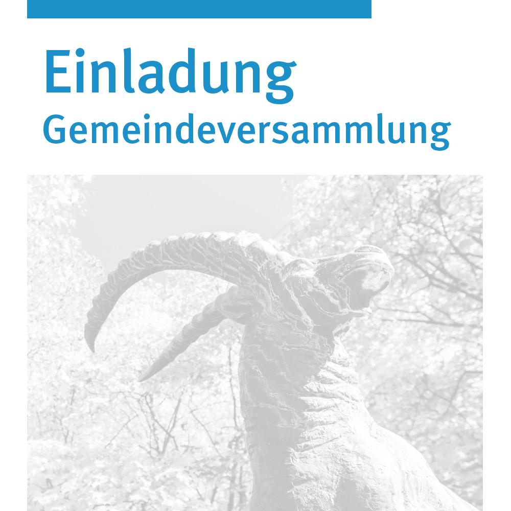 AGENTMEDIA_Gemeinde_Steinhausen_Einladung
