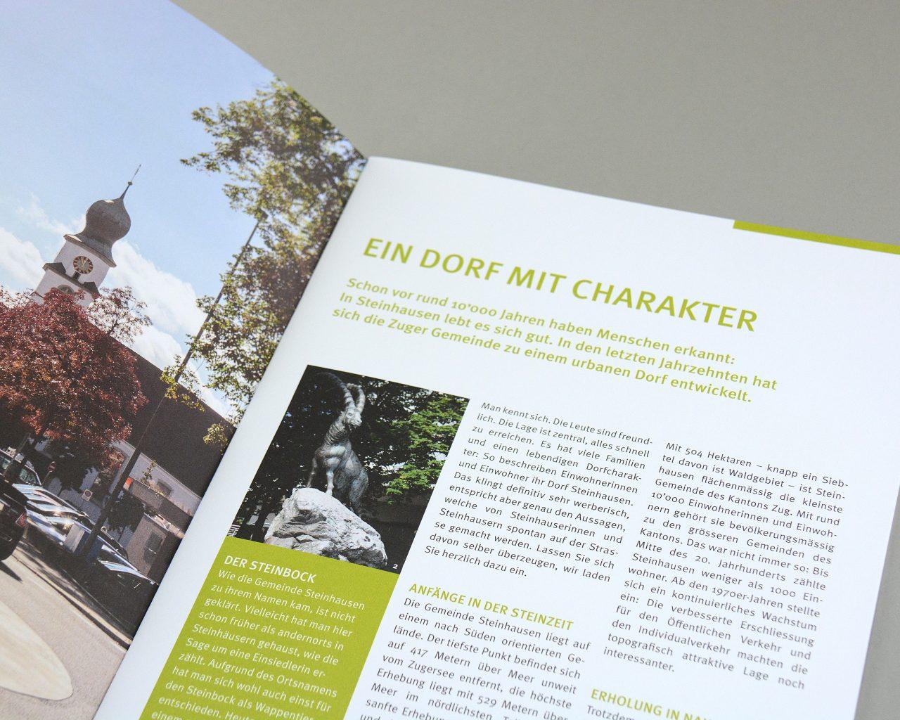 AGENTMEDIA_Gemeinde_Steinhausen_Broschure