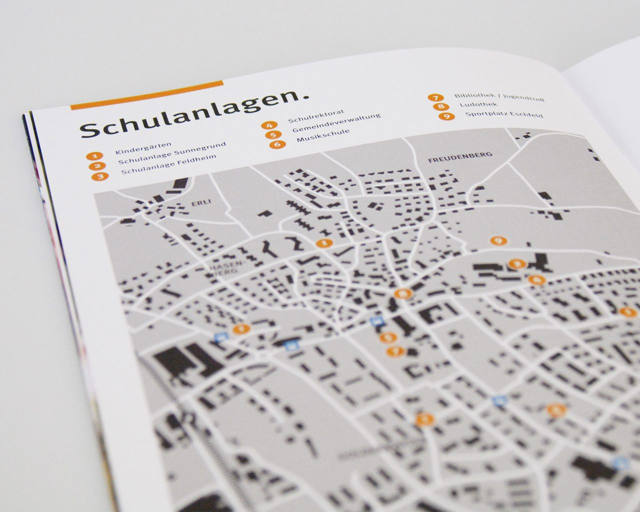 steinhausencd-13